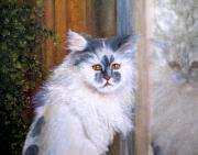 detail grey persian cat painting