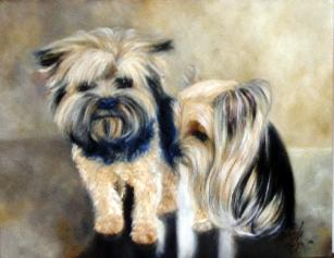 two yorkie dogs in oil paint